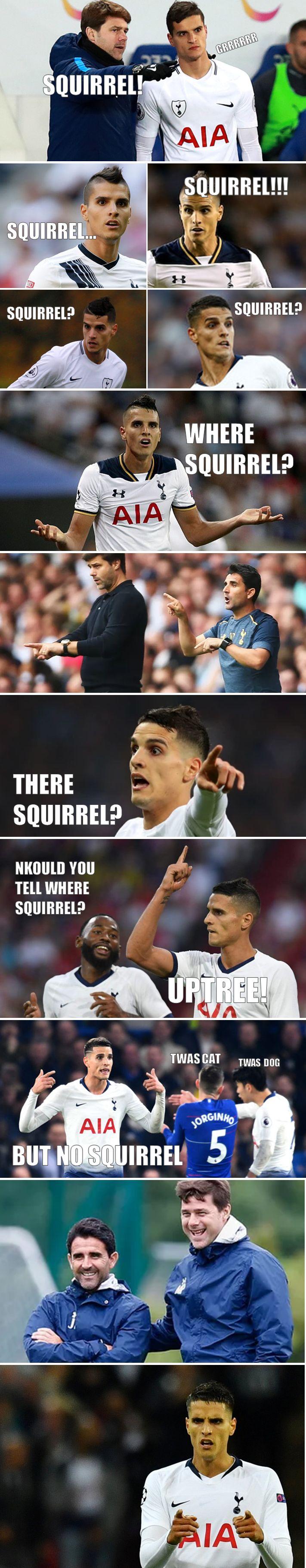 squirrel strip2.jpg